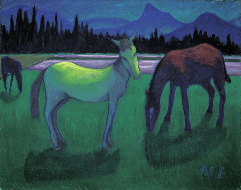 Pferde in der Nacht